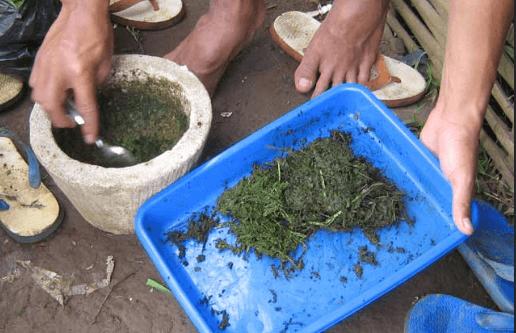Pestisida Nabati sederhana